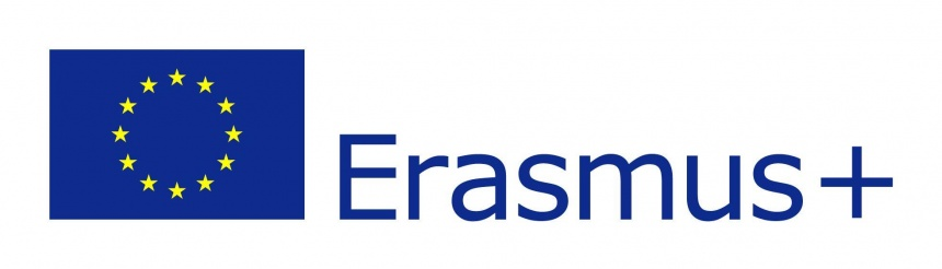 3 EU flag Erasmus vect POS preview